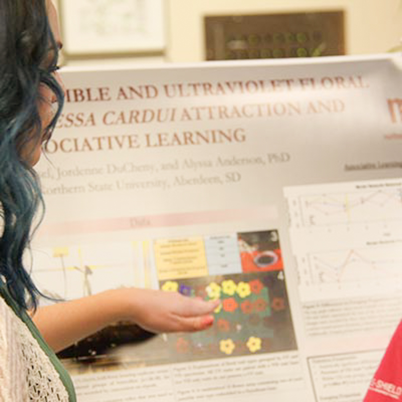 People examine a research poster