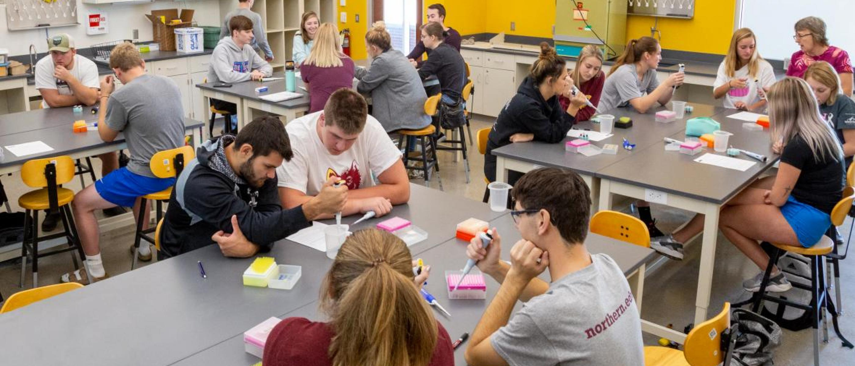Students work in a Northern science lab