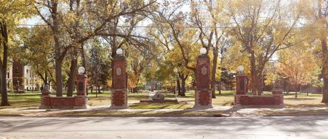 View of the NSU campus green and pillars